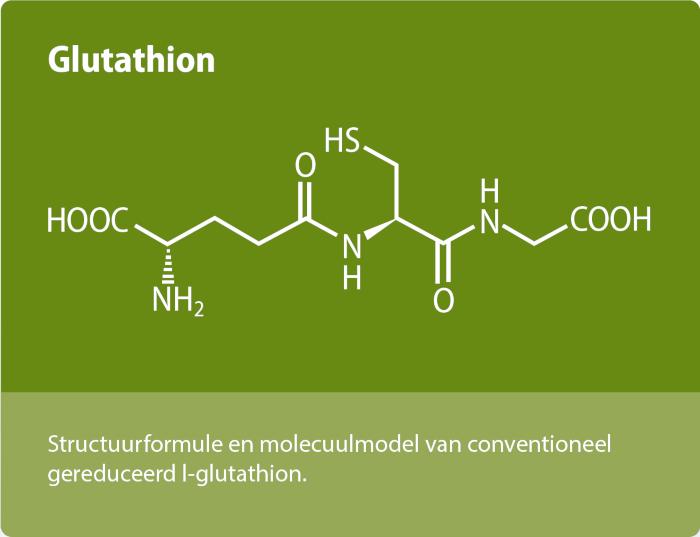 Glutathion molecuul