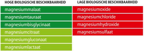 Opneembaarheid Magnesium Vormen